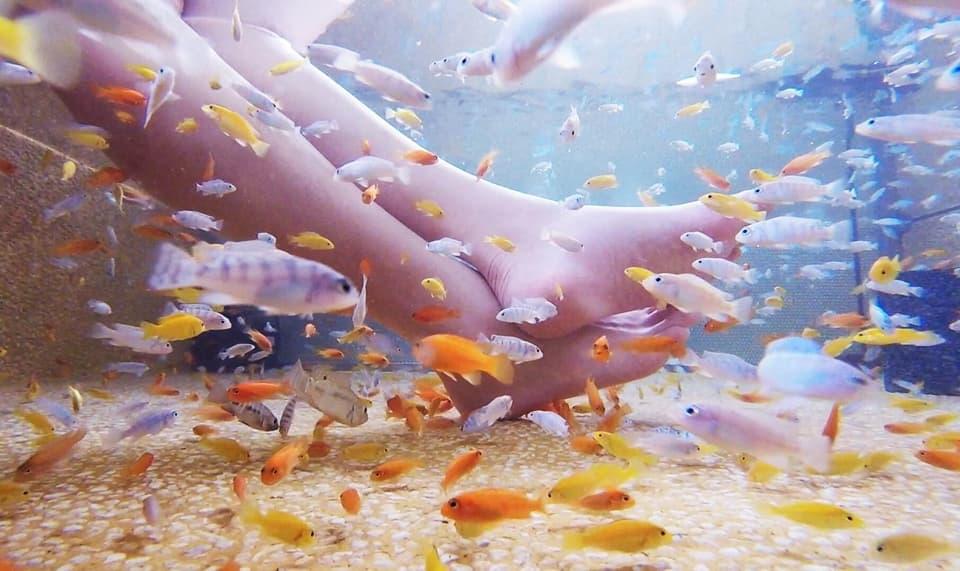 全台10大溫泉名湯-宜蘭礁溪溫泉